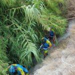 Crónica de la ruta MTB Salinas Vía Verde Altorreal Tomillar Rambla Calderones con alguna caída