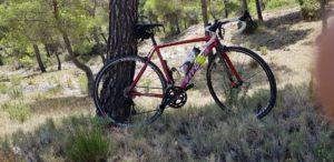 Bicicleta de Carretera Vitoria aparcada en tronco de pino en Sierra Espuña por Comunidad Biker MTB