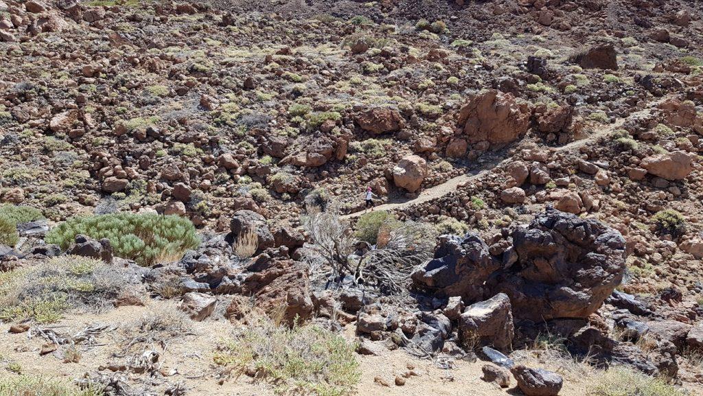 Sendero 39 del Teide camino del Monte Blanco en paisaje volcánico Tenerife por Comunidad Biker MTB